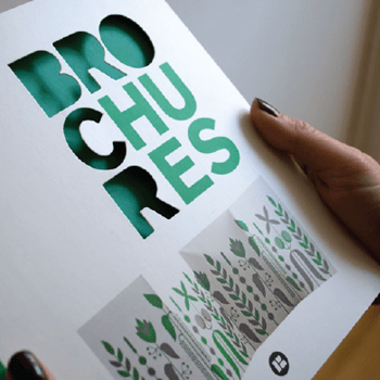 A custom printed brochure that with the letters